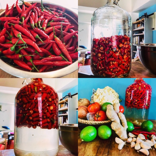 Peppers in Brine